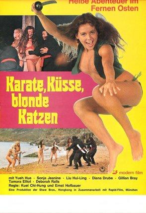 karate_kuesse_blonde_katzen_2